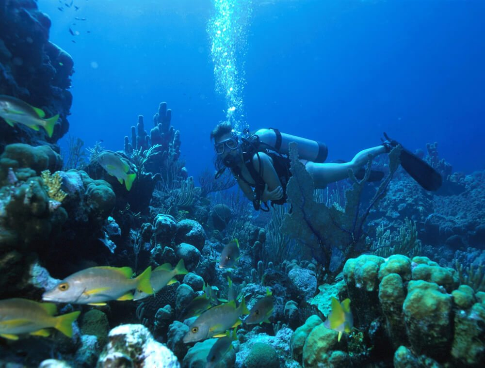 snorkeling-and-scuba-diving