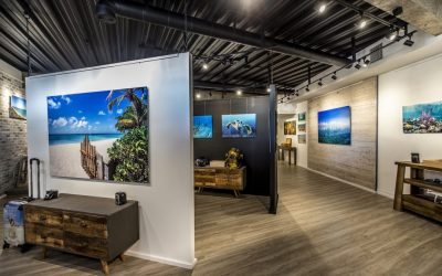 Fine Art Photography Gallery in Grace Bay